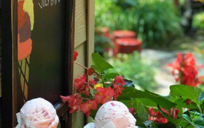Strawberry Mint Kissed Ice Cream